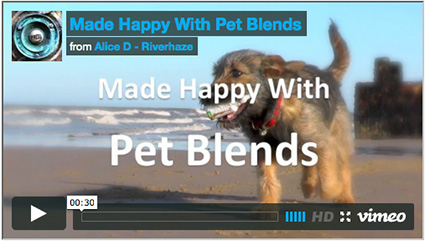 Video for pet blends